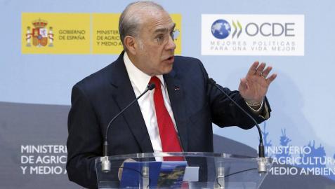 La OCDE insta a España a suprimir las subvenciones que se dan al carbón