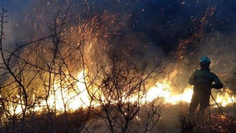 Navarra sufre en el último mes cerca de 100 incendios forestales