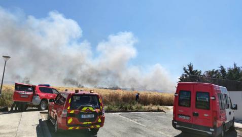 Las llamas afectaron a un campo cosechado quemado la paja restante y ocasionando una columna de humo que alertó este domingo, 21 de junio, a los vecinos de Sarriguren.