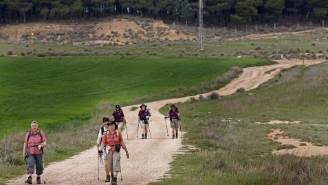 El Camino de Santiago, de Los Arcos a Logroño