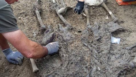Exhumados los cuerpos de cuatro fugados de San Cristóbal en Larrasoaña