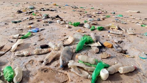 Residuos de plásticos en una playa