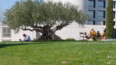Diez grados de la Universidad de Navarra, entre los mejores de España