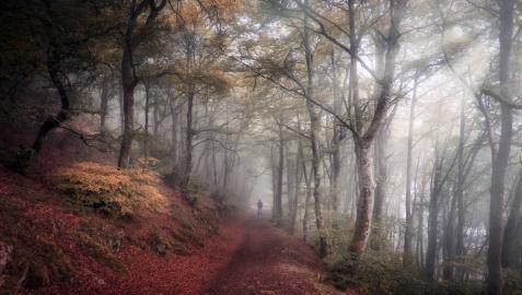 Fotografía Ibilaldia, ganadora del Concurso Fotográfico Conocer Navarra 2020.