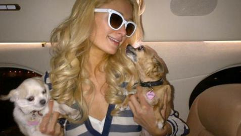 Paris Hilton gana miles de euros en el casino