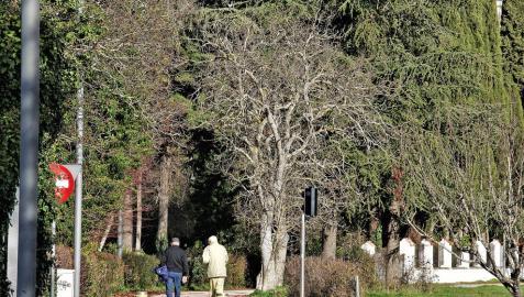 ¿Introduciría animales en el parque Aranzadi de Pamplona?