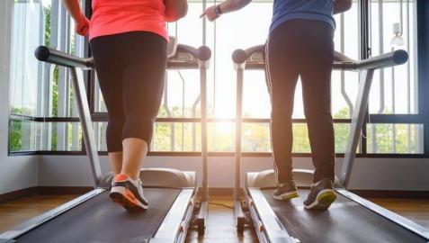 P-sinefrina: la sustancia que ayuda a quemar más grasas haciendo ejercicio