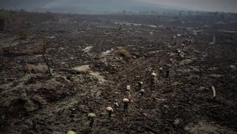 Nueva erupción en el Congo: rugen los volcanes de los que escribió Michael Crichton