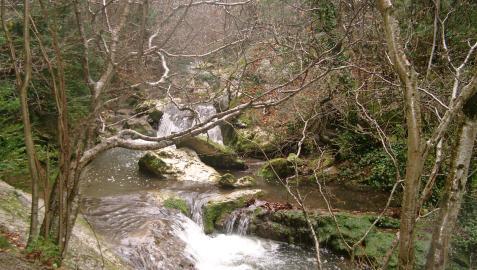 Parque natural de Valderejo, en Valdegovía