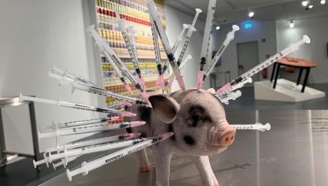 Escultura que denuncia de como son tratados los cerdos en la cadena de comida expuesta en el Disgusting Food Museum en Berlín.