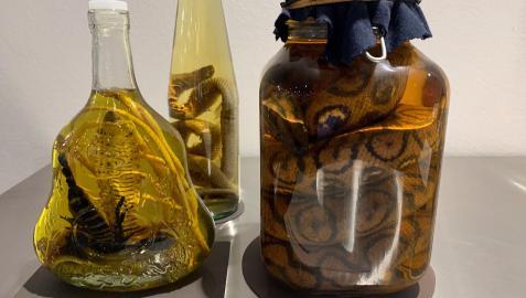 Productos en el Museo de la comida repugnante en Berlín