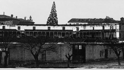 Imagen de la plaza vieja tomada del libro 'Luis Rouzaut, óptico de profesión y cronista de la vida navarra a principios del siglo XX'. Detrás, la secuoya de Diputación.