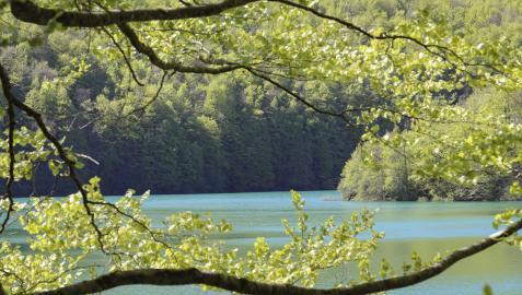 El embalse de Irabia es uno de los rincones más buscados dentro de la enorme masa forestal de la Selva de Irati.