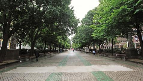 Vista del Paseo de Sarasate de Pamplona que será reurbanizado