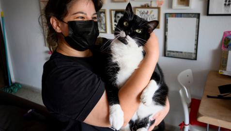 Lucia González, cuidadora de gatos en la ciudad de Granada