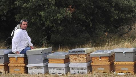 Enrique Ibáñez Ayesa trabaja como apicultor en Ujué