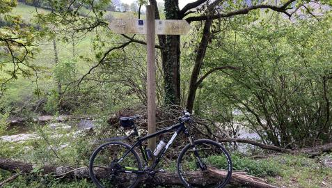 Una bici apoyada en un árbol, a orillas del río Bidasoa