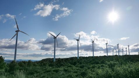 Imagen de un parque eólico contruido por la eléctrica vasca en Albacete