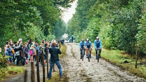 Los corredores del  Movistar Team el jueves por la mañana atravesando el Bosque de Aremberg