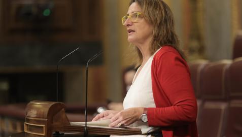 La ministra Ribera, este jueves en el Congreso