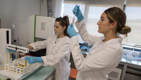 Dos de las técnicas del laboratorio de Oleofat, Angela Varón Armendáriz y María García Calavia, durante un trabajo rutinario