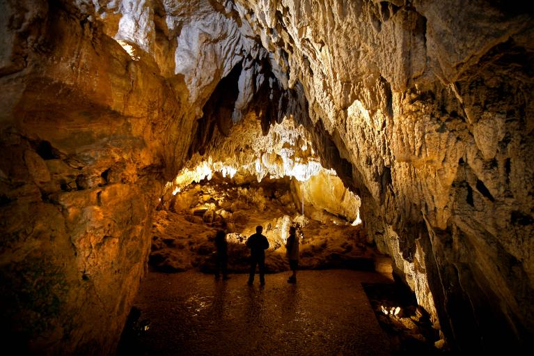 Cueva de Urdax